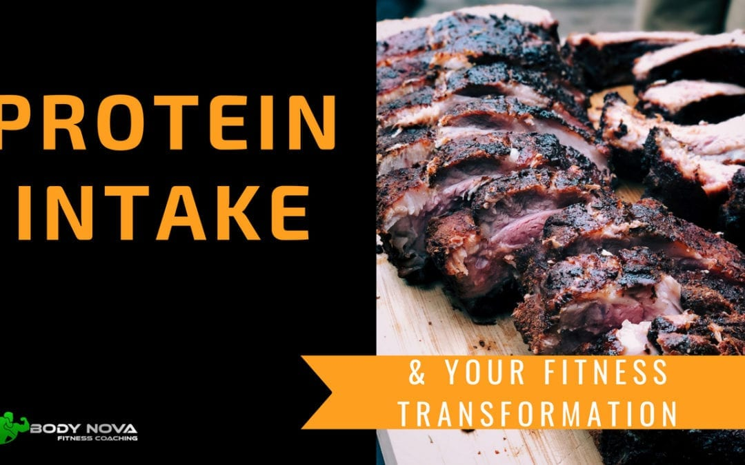 Protein Intake & Your Fitness Transformation